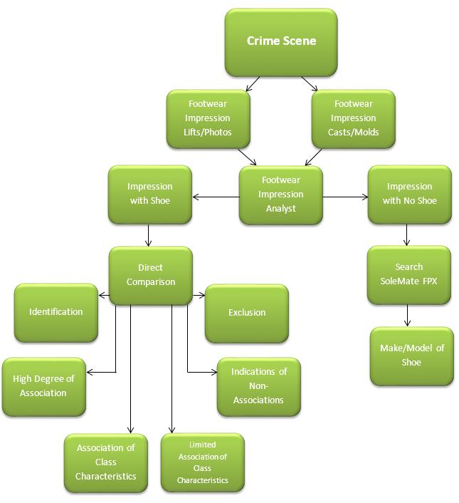 Department Forensics